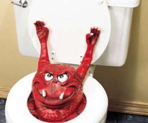 The Straight Poop – Monster Poo